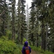 Wander Washington
