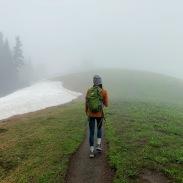 Forever in the fog